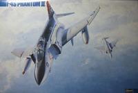 F14avf41_035